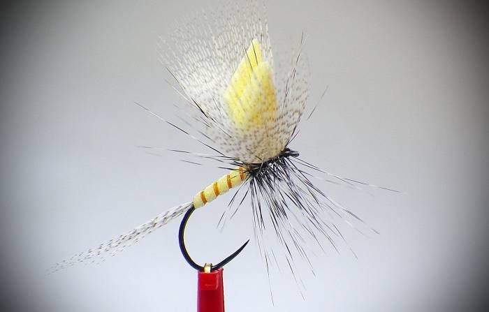 Cream Polifoam Mayfly