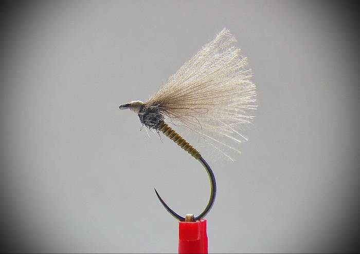 Olive Cock Quill F Fly - 1