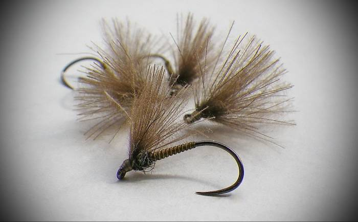 Olive Cock Quill F Fly - 2